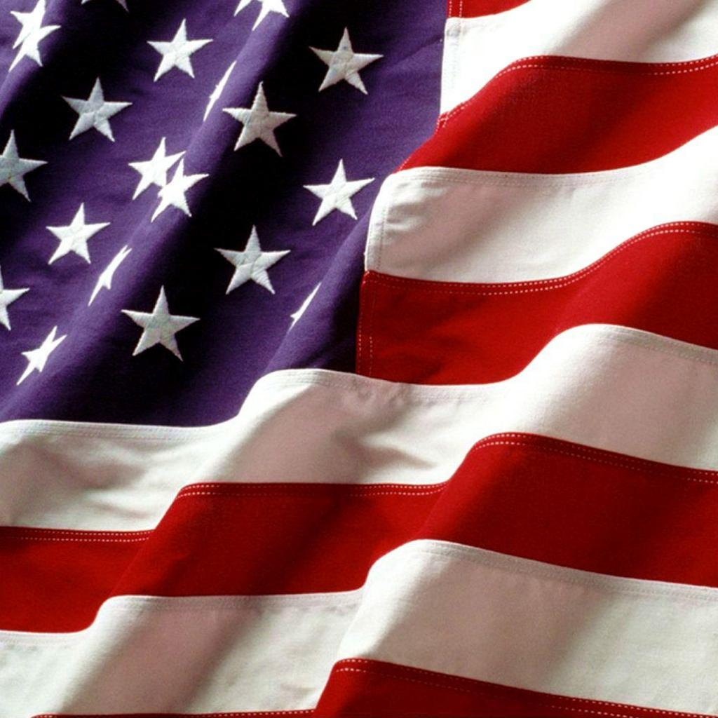 This is a picture of the American Flag